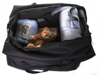 Genesis Car Seat Travel Bag